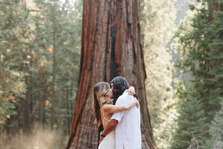 sequoiaelopement-24